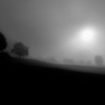 Black Forest Misty Sunrise (BW)