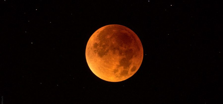 Lunar Eclipse V: 04:48 - full eclipse, the bloodmoon among the s