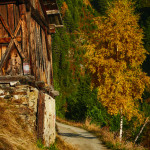 Indian Summer in Alto Adige