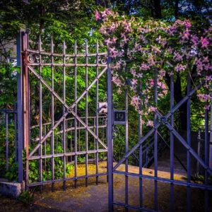 Enter: Spring...